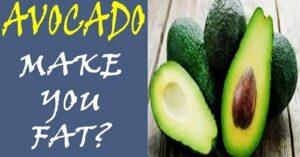 avocado make you fat
