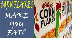 corn flakes make you fat